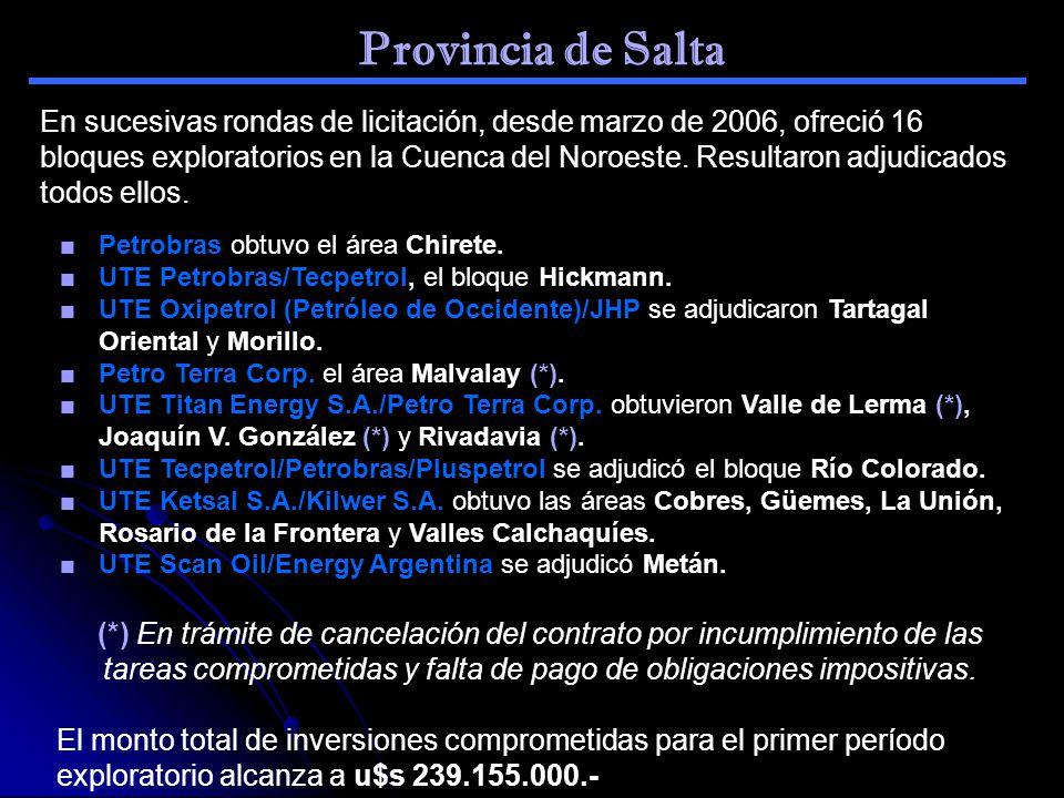 Provincia de Salta En sucesivas rondas de licitación, desde marzo de 2006, ofreció 16 bloques exploratorios en la Cuenca del Noroeste. Resultaron adju