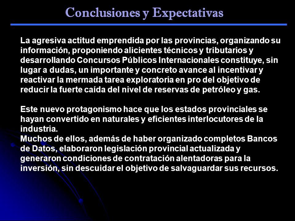 Conclusiones y Expectativas La agresiva actitud emprendida por las provincias, organizando su información, proponiendo alicientes técnicos y tributari