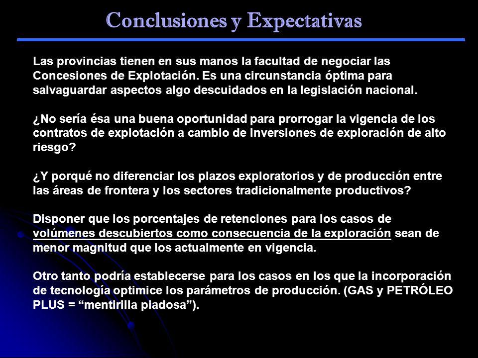 Conclusiones y Expectativas Las provincias tienen en sus manos la facultad de negociar las Concesiones de Explotación. Es una circunstancia óptima par