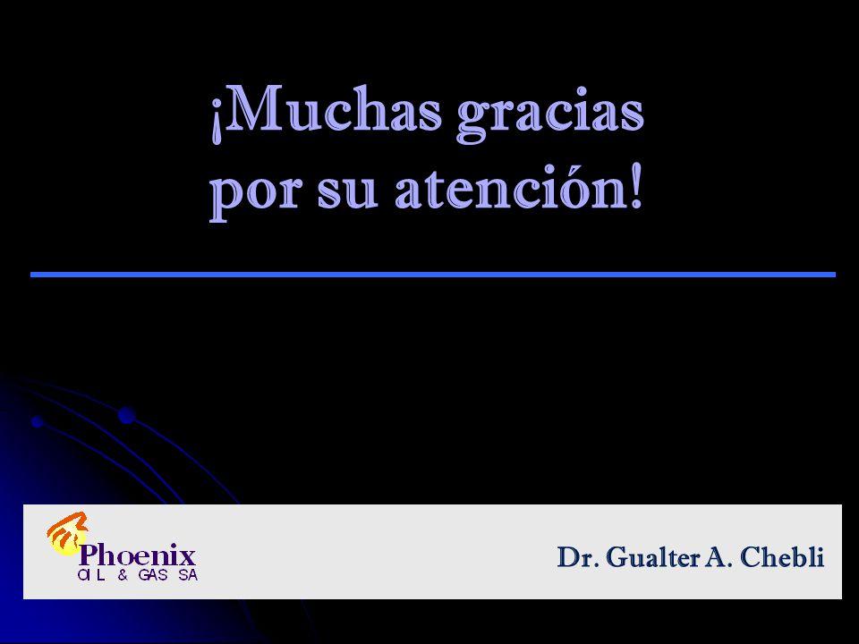 ¡Muchas gracias por su atención! Dr. Gualter A. Chebli