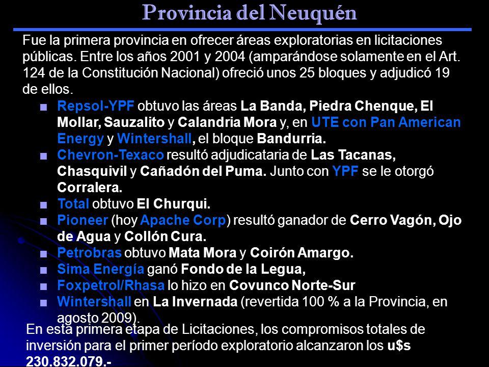 Provincia del Neuquén Repsol-YPF obtuvo las áreas La Banda, Piedra Chenque, El Mollar, Sauzalito y Calandria Mora y, en UTE con Pan American Energy y