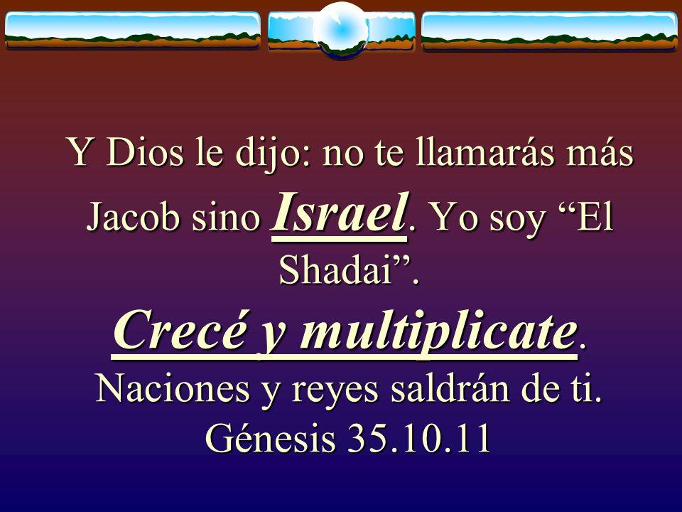 Los hijos de Israel fueron 12: Génesis 35.2 Rubén Simeón Leví Judá Isacar Zabulón José Benjamín Dan Neftalí Gad Aser
