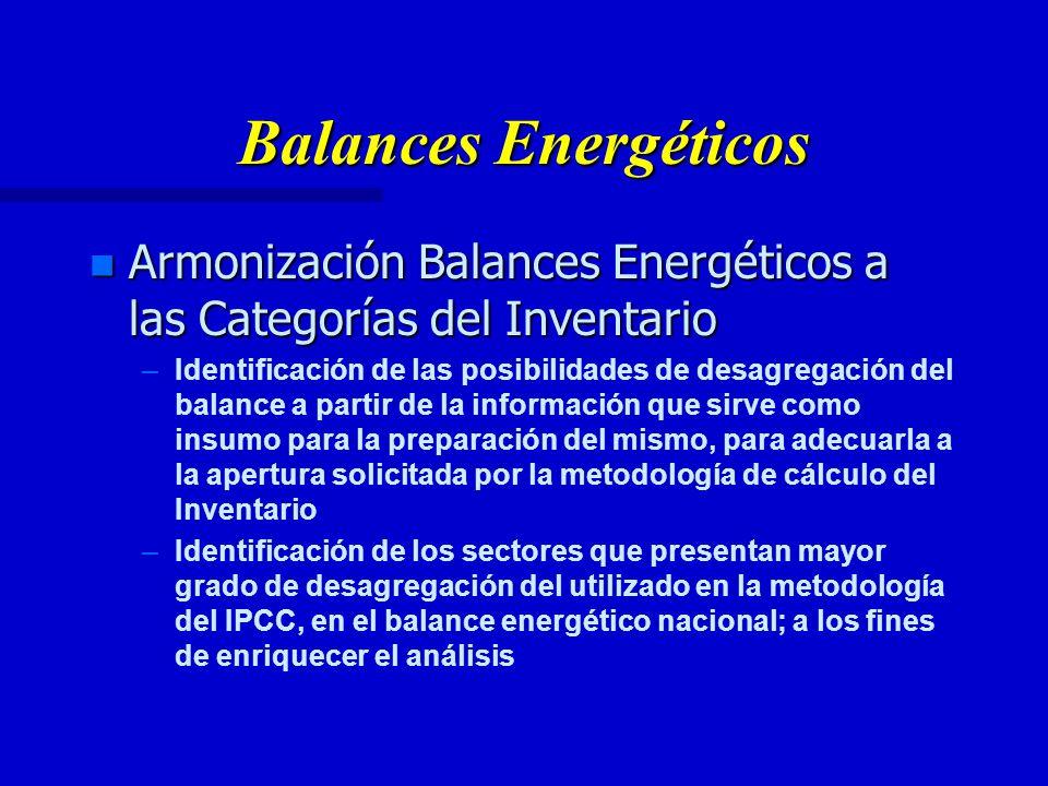 Balances Energéticos n Armonización Balances Energéticos a las Categorías del Inventario – –Identificación de las posibilidades de desagregación del balance a partir de la información que sirve como insumo para la preparación del mismo, para adecuarla a la apertura solicitada por la metodología de cálculo del Inventario – –Identificación de los sectores que presentan mayor grado de desagregación del utilizado en la metodología del IPCC, en el balance energético nacional; a los fines de enriquecer el análisis