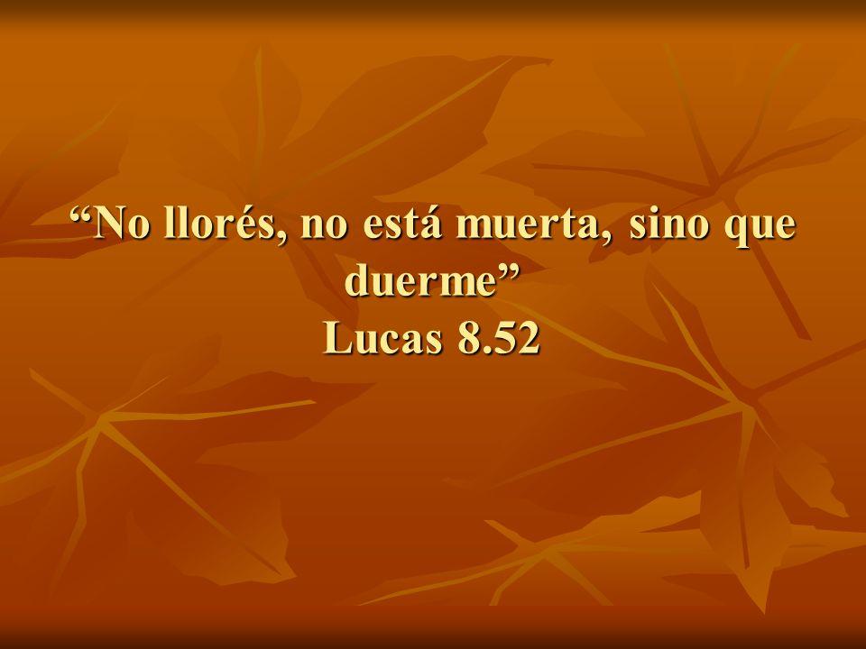 No llorés, no está muerta, sino que duerme Lucas 8.52