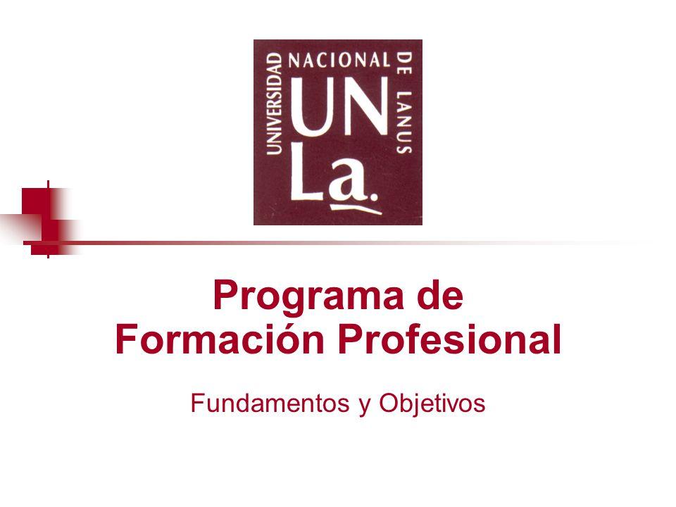 Programa de Formación Profesional Fundamentos y Objetivos