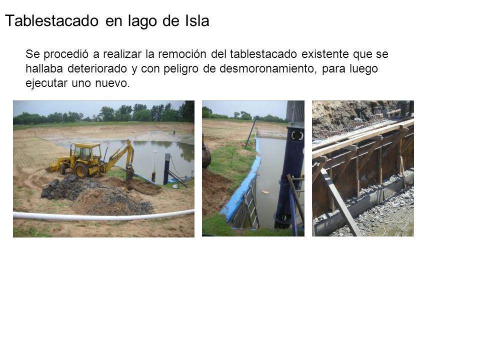 Tablestacado en lago de Isla Se procedió a realizar la remoción del tablestacado existente que se hallaba deteriorado y con peligro de desmoronamiento, para luego ejecutar uno nuevo.