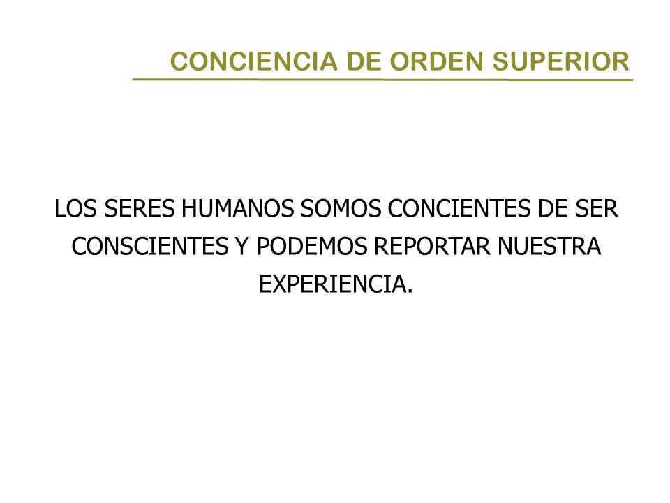 LOS SERES HUMANOS SOMOS CONCIENTES DE SER CONSCIENTES Y PODEMOS REPORTAR NUESTRA EXPERIENCIA. CONCIENCIA DE ORDEN SUPERIOR