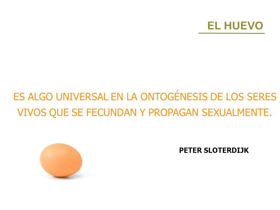 EL HUEVO ES ALGO UNIVERSAL EN LA ONTOGÉNESIS DE LOS SERES VIVOS QUE SE FECUNDAN Y PROPAGAN SEXUALMENTE. PETER SLOTERDIJK