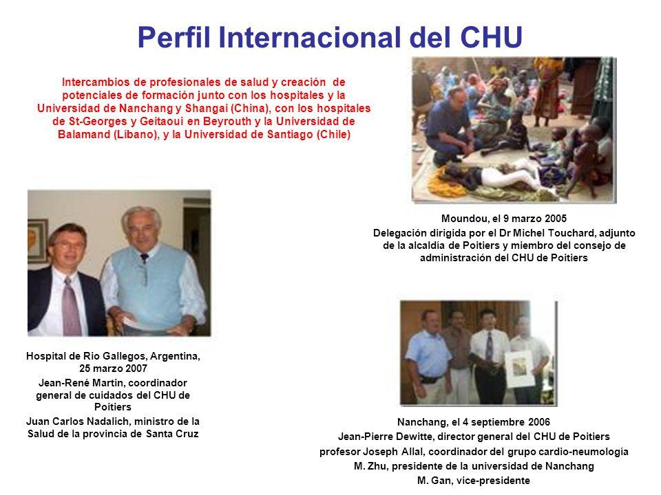 Algunas de las temáticas más importantes del CHU