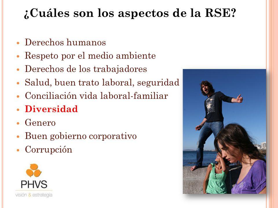 ¿Cuáles son los aspectos de la RSE? Derechos humanos Respeto por el medio ambiente Derechos de los trabajadores Salud, buen trato laboral, seguridad C