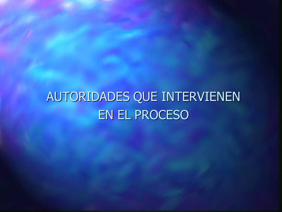 AUTORIDADES QUE INTERVIENEN EN EL PROCESO