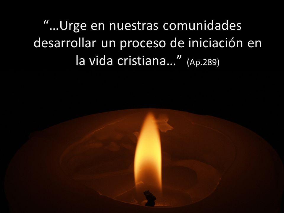 …Urge en nuestras comunidades desarrollar un proceso de iniciación en la vida cristiana… (Ap.289)