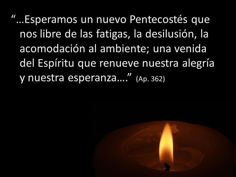 …Esperamos un nuevo Pentecostés que nos libre de las fatigas, la desilusión, la acomodación al ambiente; una venida del Espíritu que renueve nuestra a