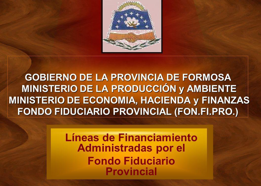 GOBIERNO DE LA PROVINCIA DE FORMOSA MINISTERIO DE LA PRODUCCIÓN y AMBIENTE MINISTERIO DE ECONOMIA, HACIENDA y FINANZAS FONDO FIDUCIARIO PROVINCIAL (FO