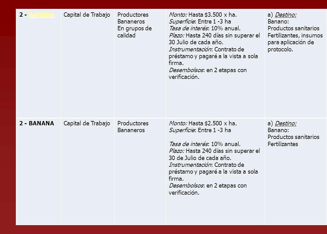 2 - BANANA BANANA Capital de Trabajo Productores Bananeros En grupos de calidad Monto: Hasta $3.500 x ha. Superficie: Entre 1 -3 ha Tasa de interés: 1