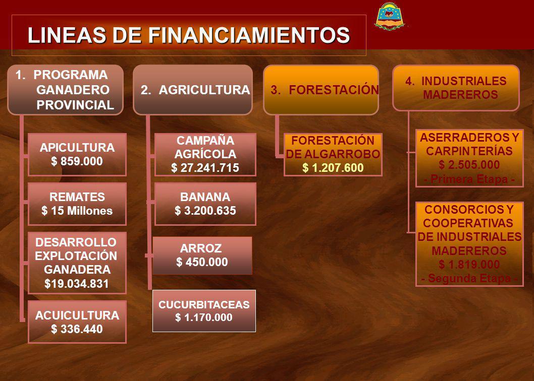 LINEAS DE FINANCIAMIENTOS PROVINCIA DE FORMOSA 1.PROGRAMA GANADERO PROVINCIAL APICULTURA $ 859.000 REMATES $ 15 Millones DESARROLLO EXPLOTACIÓN GANADE