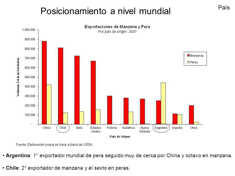 Posicionamiento a nivel mundial Argentina: 1° exportador mundial de pera seguido muy de cerca por China y octavo en manzana. Chile: 2° exportador de m