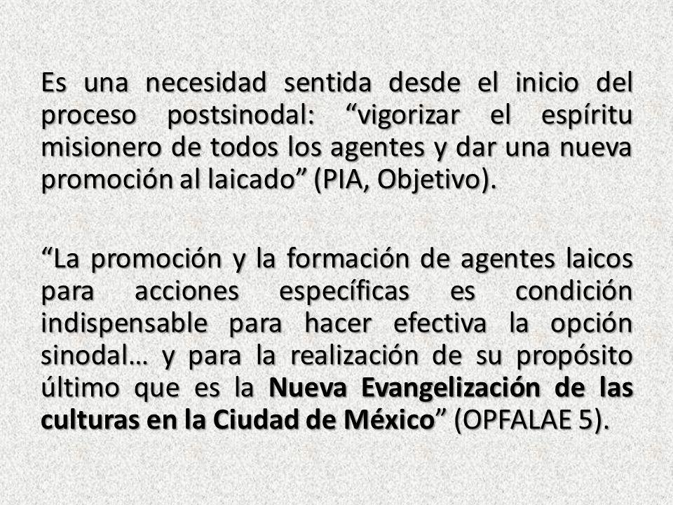 Es una necesidad sentida desde el inicio del proceso postsinodal: vigorizar el espíritu misionero de todos los agentes y dar una nueva promoción al laicado (PIA, Objetivo).
