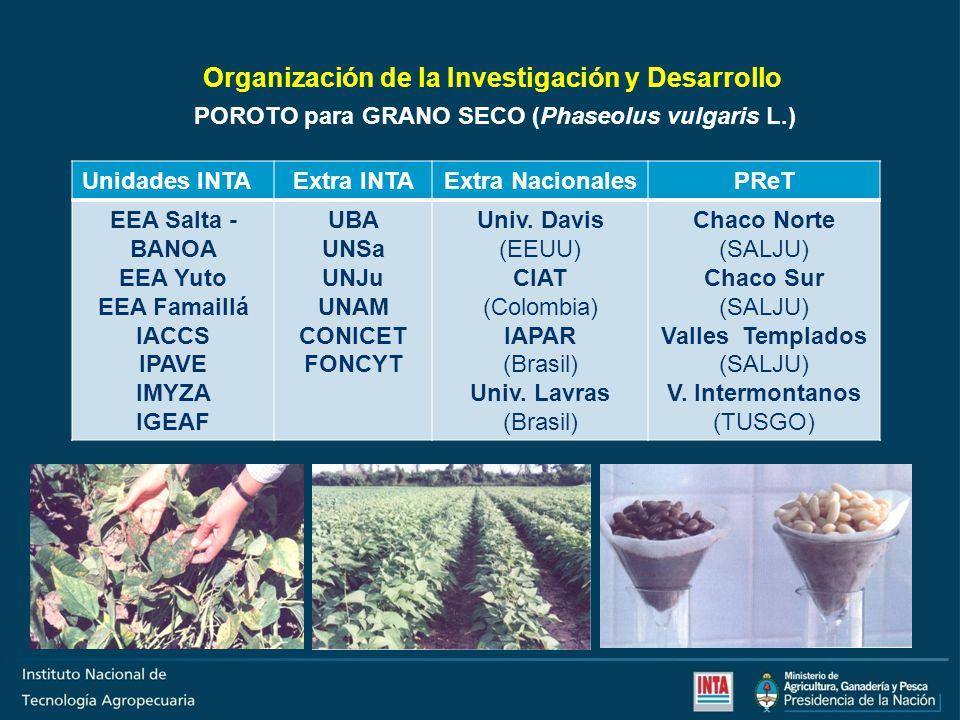 Organización de la Investigación y Desarrollo Unidades INTAExtra INTAExtra NacionalesPReT EEA La Consulta EEA Famaillá UNCu (Sede) CIAT (Colombia) Oasis Norte Cinturón Verde Valles Andinos (MZASJ) V.