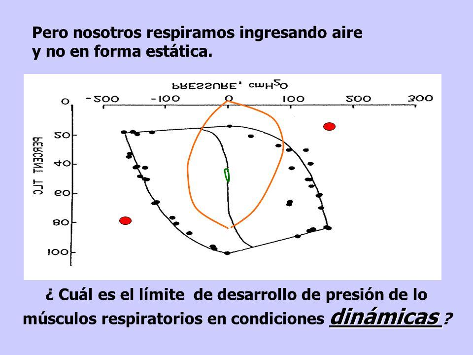 dinámicas ¿ Cuál es el límite de desarrollo de presión de lo músculos respiratorios en condiciones dinámicas .