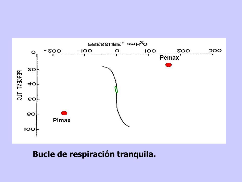 estáticas.Límite de desarrollo de presión de los músculos respiratorios en condiciones estáticas.
