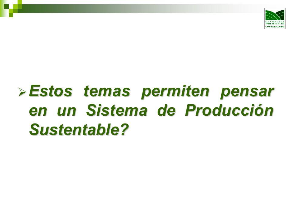Estos temas permiten pensar en un Sistema de Producción Sustentable? Estos temas permiten pensar en un Sistema de Producción Sustentable?
