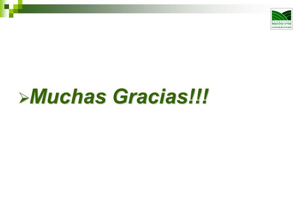 Muchas Gracias!!! Muchas Gracias!!!