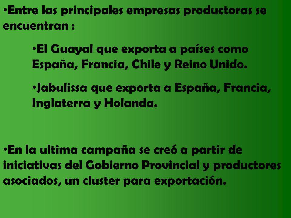 Entre las principales empresas productoras se encuentran : El Guayal que exporta a países como España, Francia, Chile y Reino Unido. Jabulissa que exp