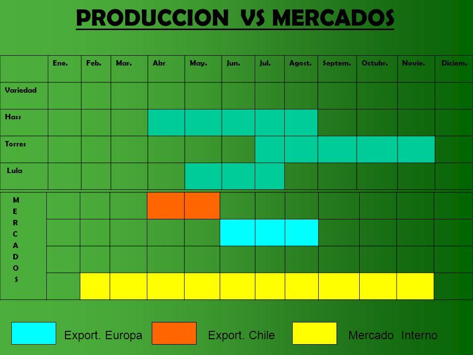 Ene.Feb.Mar.Abr. May.Jun.Jul.Agost.Septem.Octubr.Novie. Diciem. Variedad Hass Torres Lula PRODUCCION VS MERCADOS M E R C A D O S Export. EuropaExport.