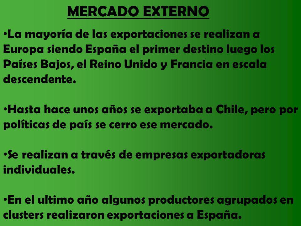 MERCADO EXTERNO La mayoría de las exportaciones se realizan a Europa siendo España el primer destino luego los Países Bajos, el Reino Unido y Francia
