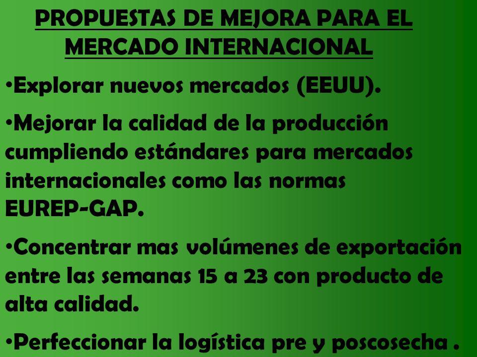 PROPUESTAS DE MEJORA PARA EL MERCADO INTERNACIONAL Explorar nuevos mercados (EEUU). Mejorar la calidad de la producción cumpliendo estándares para mer