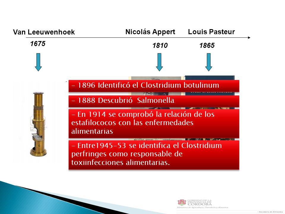 Van Leeuwenhoek 1675 1865 Nicolás AppertLouis Pasteur 1810 - Entre1945-53 se identifica el Clostridium perfringes como responsable de toxiinfecciones