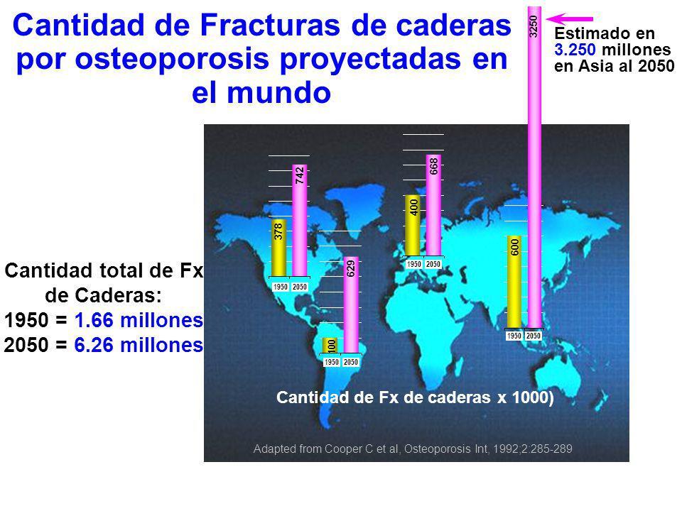 Vertebra Cadera Muñeca 50607080 40 30 20 10 Edad (Años) Incidencia anual por 1000 mujeres Incidencia de Fx osteoporóticas en la mujer Wasnich RD, Osteoporos Int 1997;7 Suppl 3:68-72