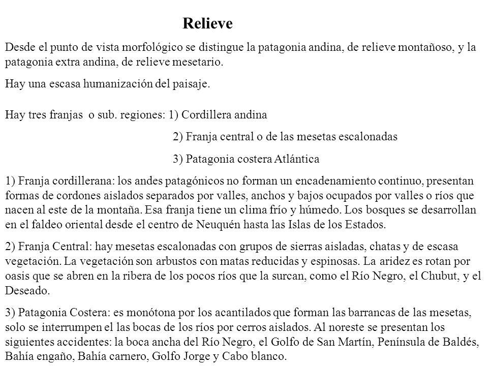 Población ProvinciasPoblación (Censo 2001) Superficie (Km 2) Densidad hab/km2 (2001) Chubut357.189224.6861.6 Neuquén474.15594.0785 Rio Negro506.772203.0132.5 Tierra del Fuego69.36921.5713.2 Santa Cruz159.839243.9430.7 La Pampa259.996143.4401.8 Patagonia1.741.998930.7311.9 % con relación al total nacional 5.332.698.7 Total país32.615.5282.780.400