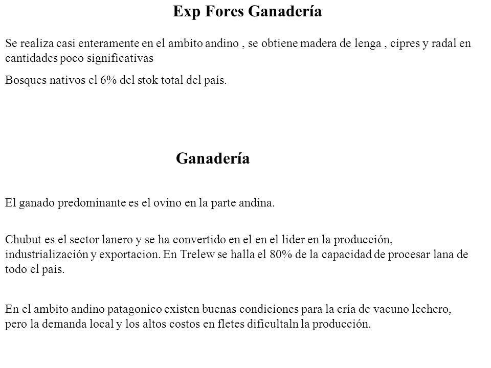 Exp Fores Ganadería Bosques nativos el 6% del stok total del país. Se realiza casi enteramente en el ambito andino, se obtiene madera de lenga, cipres