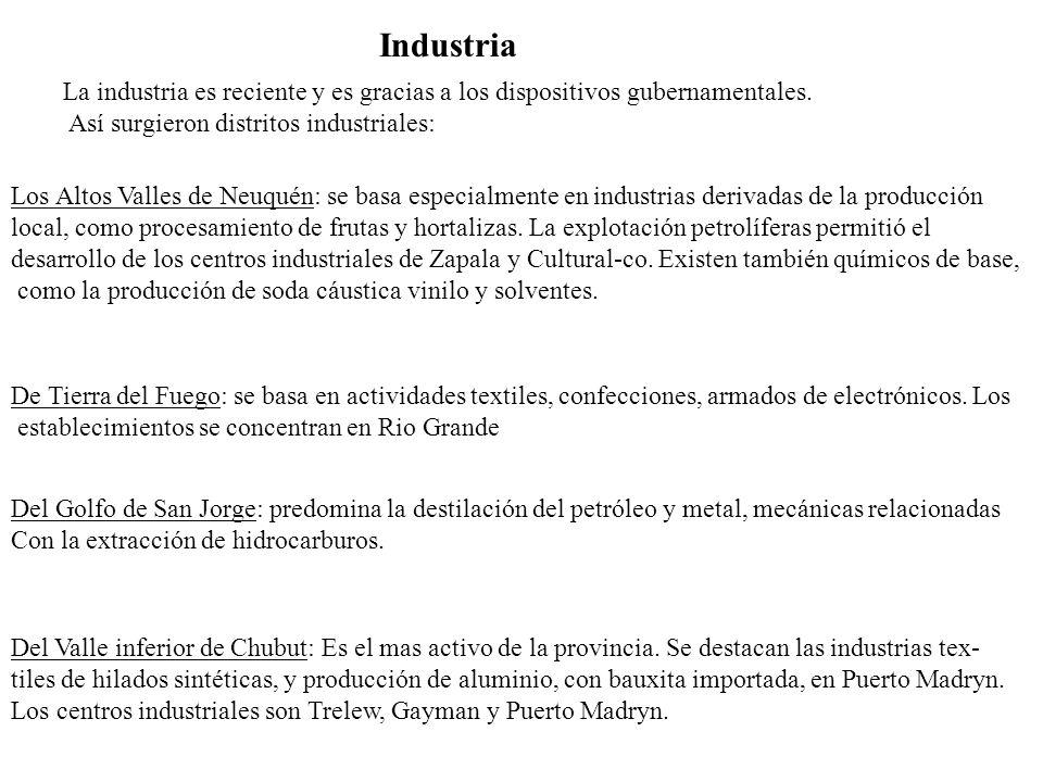 Pesquero industrialPuerto Maryn y Rawson Sidero metañurgico (aluminio)Puerto Madryn Textil sintetico y laneroTrelew ForestalTrevelin Metalmecanico pesado (bombas de profundidad para petróleo) Comodoro Rivadavia Procesamiento del algasGiman Concervero (Frutas finas)Lago pueblo CementeroComodoro RivadaviaRubrosPatagonia Frutas y frytos6,67% Combustibles61,69% Carnes1,25% Hortaliza-frutas 3,45 Maquinas 0,87% Lanas 3,09% Pescados y Maricos 17,46% Aluminio 5,33% Estructura productora poblacional por rubros exportables 1996 en base a INDEC 1999.