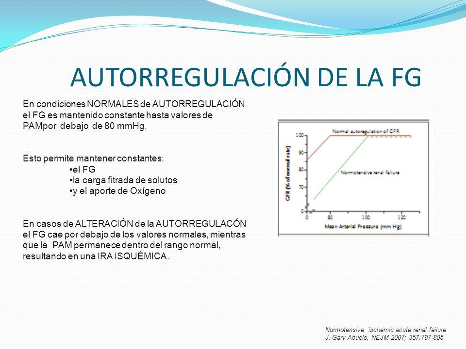 AUTORREGULACIÓN DE LA FG Normotensive ischemic acute renal failure J. Gary Abuelo, NEJM 2007; 357:797-805 En condiciones NORMALES de AUTORREGULACIÓN e