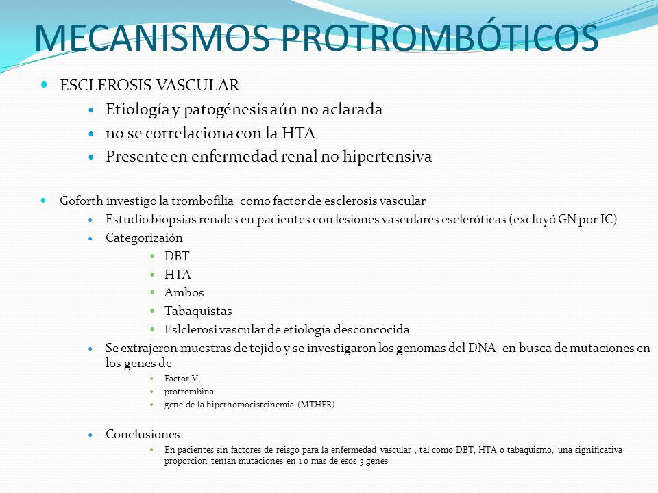 ESCLEROSIS VASCULAR Etiología y patogénesis aún no aclarada no se correlaciona con la HTA Presente en enfermedad renal no hipertensiva Goforth investi