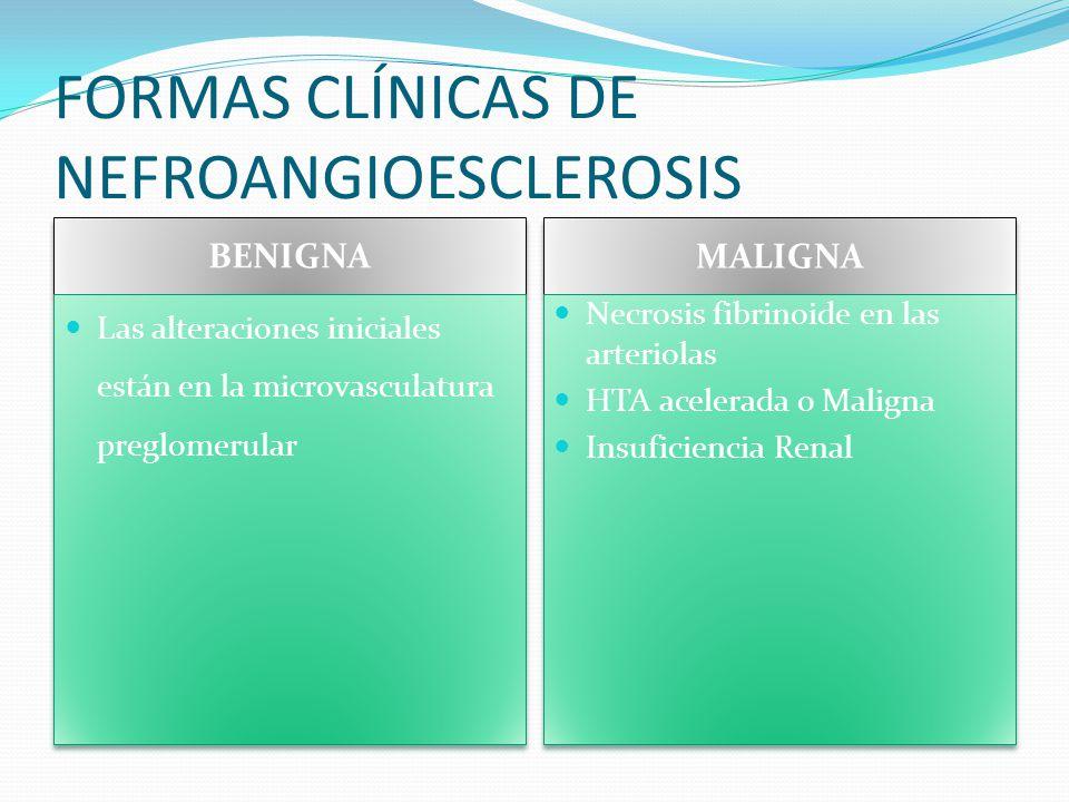 FORMAS CLÍNICAS DE NEFROANGIOESCLEROSIS BENIGNA MALIGNA Las alteraciones iniciales están en la microvasculatura preglomerular Necrosis fibrinoide en l