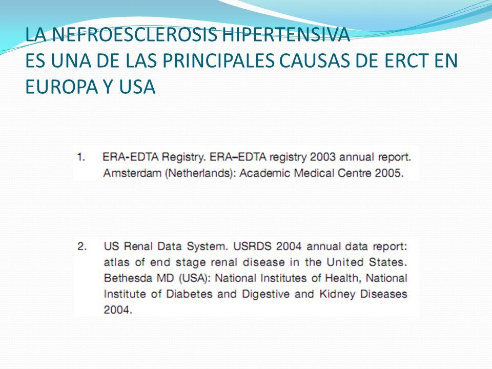 LESIONES INTERSTICIALES ATROFIA Acumulación de linfocitos El % de esclerosis y atrofia tubular, tiene valor pronóstico