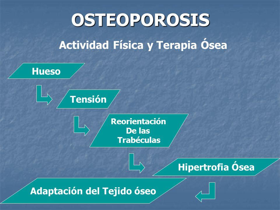 OSTEOPOROSIS Actividad Física y Terapia Ósea Hueso Tensión Reorientación De las Trabéculas Hipertrofia Ósea Adaptación del Tejido óseo
