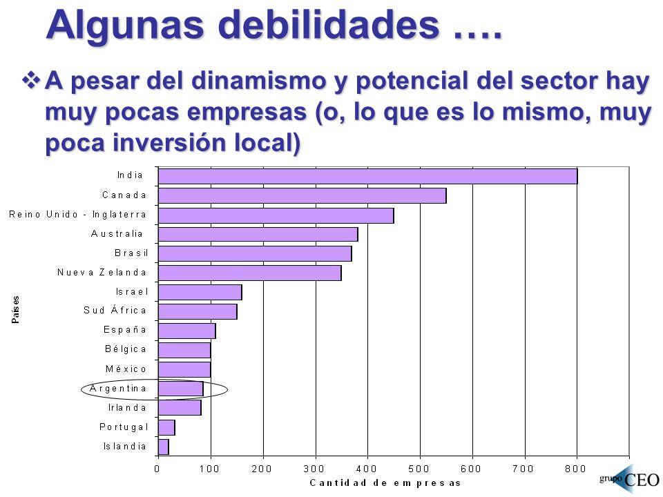 Algunas debilidades …. A pesar del dinamismo y potencial del sector hay muy pocas empresas (o, lo que es lo mismo, muy poca inversión local) A pesar d