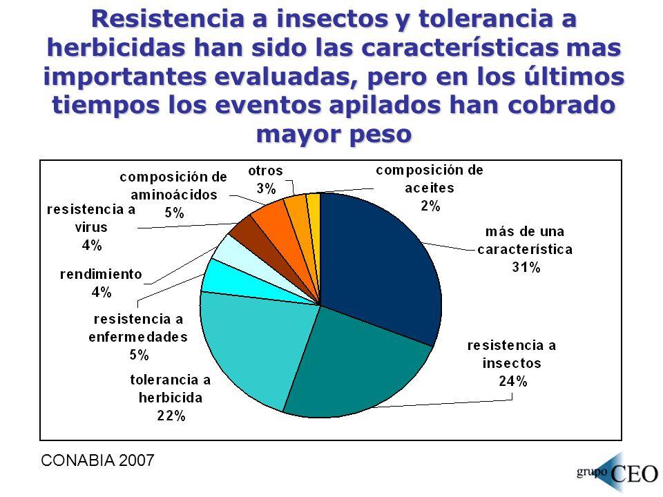 Resistencia a insectos y tolerancia a herbicidas han sido las características mas importantes evaluadas, pero en los últimos tiempos los eventos apila