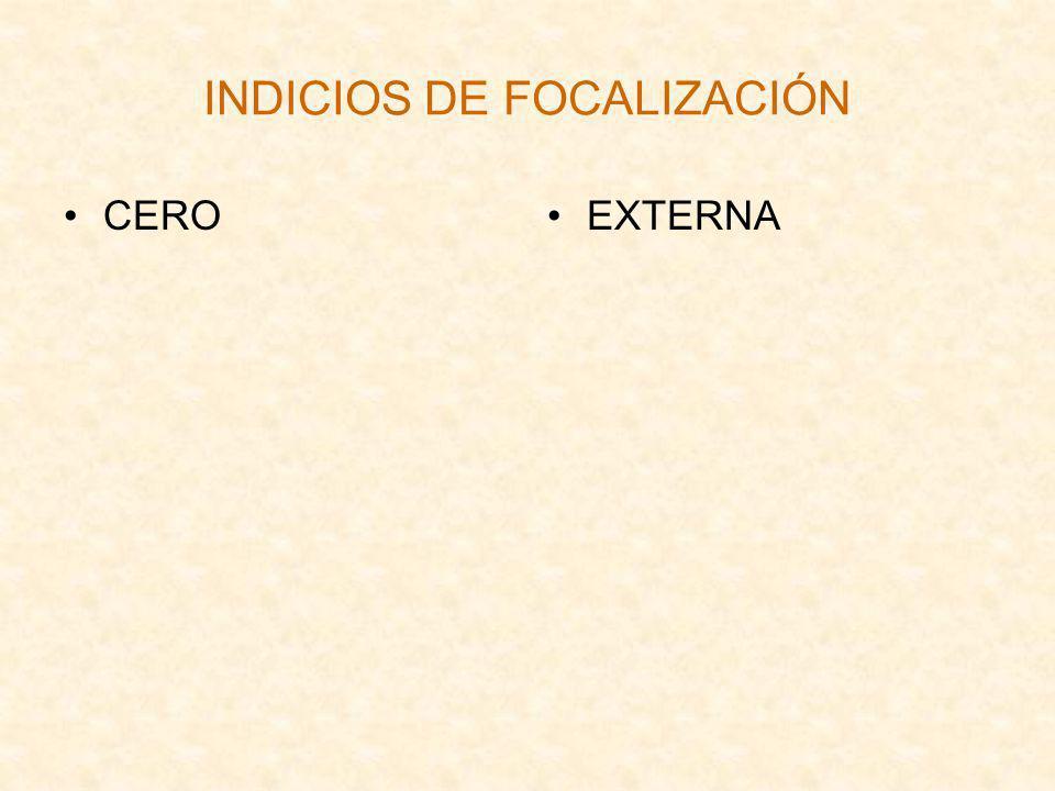 INDICIOS DE FOCALIZACIÓN CEROEXTERNA