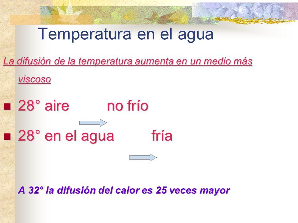 Temperatura en el agua La difusión de la temperatura aumenta en un medio más viscoso 28° aire no frío 28° aire no frío 28° en el agua fría 28° en el a