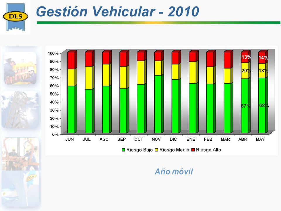 Gestión Vehicular - 2010 Año móvil