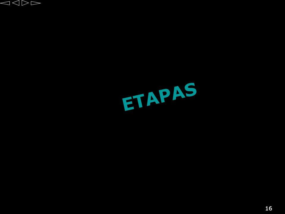 16 E T A P A S
