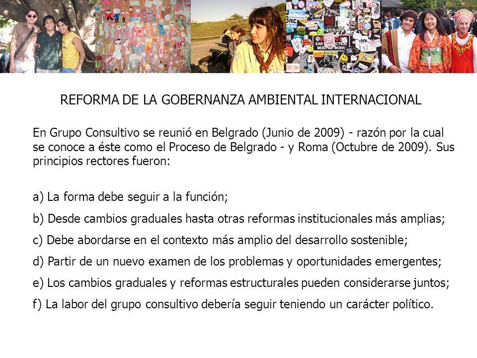 REFORMA DE LA GOBERNANZA AMBIENTAL INTERNACIONAL En Grupo Consultivo se reunió en Belgrado (Junio de 2009) - razón por la cual se conoce a éste como el Proceso de Belgrado - y Roma (Octubre de 2009).