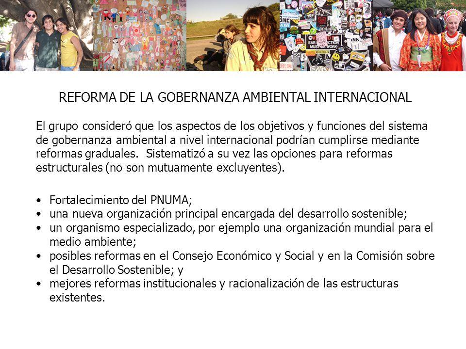 REFORMA DE LA GOBERNANZA AMBIENTAL INTERNACIONAL El grupo consideró que los aspectos de los objetivos y funciones del sistema de gobernanza ambiental a nivel internacional podrían cumplirse mediante reformas graduales.