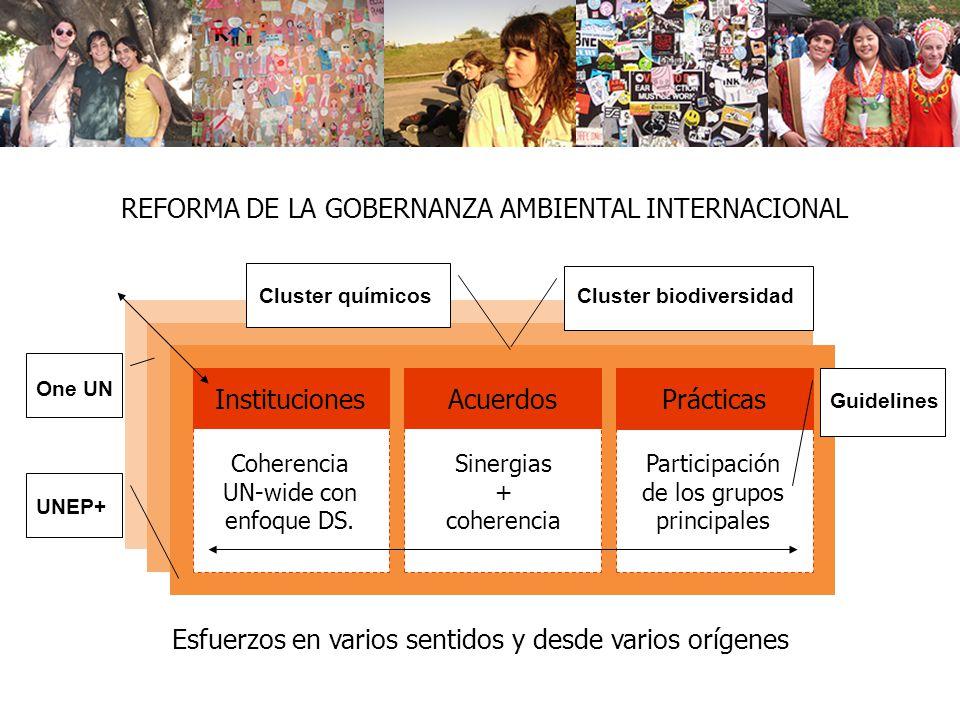REFORMA DE LA GOBERNANZA AMBIENTAL INTERNACIONAL Instituciones Coherencia UN-wide con enfoque DS. Acuerdos Sinergias + coherencia Prácticas Participac